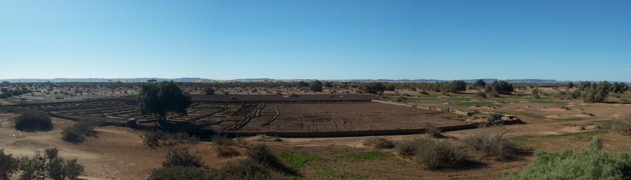 Octobre 2012 - Pisé & cultures