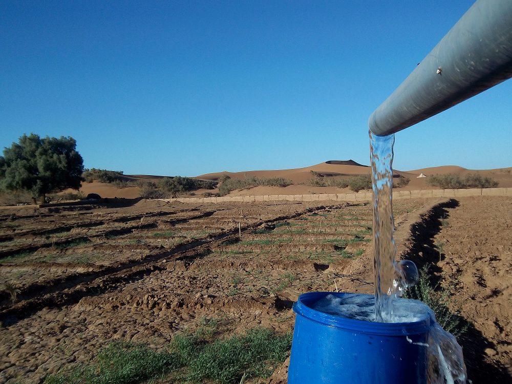 Octobre 2012 - Irrigation